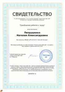 сертификат педсайт