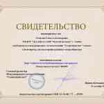 svet_rozhkova